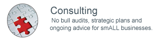 Consulting -  No bull audits, strategic plans and ongoing advice for smALL businesses.