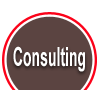 Consulting Services offered by Right On No Bull Marketing